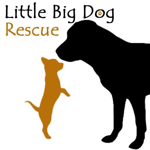 Little Big Dog Rescue Logo Icon
